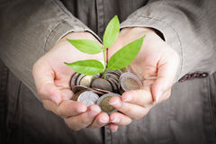 Businessman cover growing plant Royalty Free Stock Image