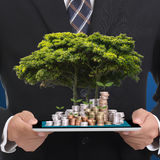 Businessman cover growing plant Stock Photos