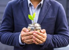 Businessman cover growing plant with coin money Stock Photos