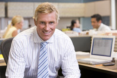 Businessman in cubicle smiling. Businessman working in office cubicle smiling Royalty Free Stock Photography