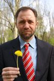 Businessman with dandelion II Royalty Free Stock Photo