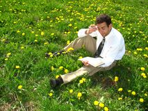 Businessman and Dandelions Stock Images