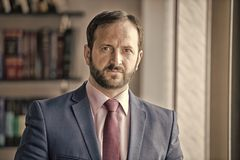 Businessman or director pose in office. Man with beard in blue jacket, shirt and tie. Fashion, style, dress code. Career, profession, work. Business royalty free stock photography