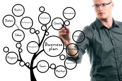 Businessman drawing conceptual business plan tree. With black marker Royalty Free Stock Image