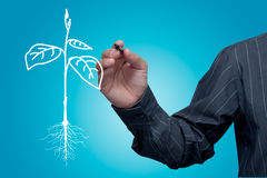 Businessman drawing a tree. Businessman drawing a tree on screen Stock Photos