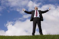 Businessman enjoying nature Stock Images