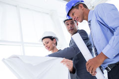 Businessman explaining a blueprint to his colleagues Royalty Free Stock Photo