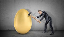 A businessman fails to break a giant golden egg because his hammer breaks down in pieces. Business and success. Tough luck. Failure and loss Royalty Free Stock Photo