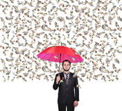 Businessman and falling dollars banknote Royalty Free Stock Images