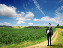 Businessman in a field Stock Photo
