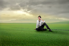 Businessman in field Royalty Free Stock Photography