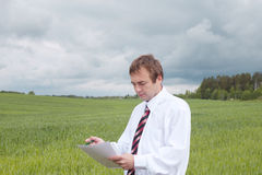 Businessman in field. Stock Image