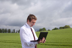 Businessman in field. Royalty Free Stock Photography