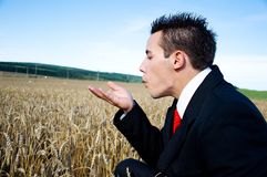 Businessman in Field Stock Images