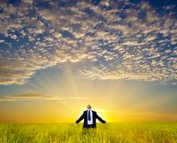 Businessman on field Stock Images