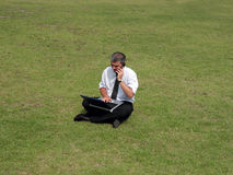 Businessman in the field Royalty Free Stock Photos