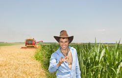 Businessman in field during harvest Royalty Free Stock Image