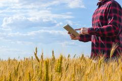 Businessman is on a field of ripe wheat and is holding a Tablet computer. The concept of the agricultural business stock photo