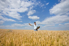 Businessman in the field Royalty Free Stock Image