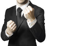 Businessman fighter fists up Stock Photography
