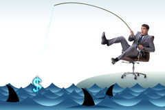 The businessman fishing out dollars from water Stock Photography
