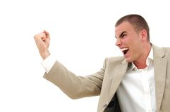 Businessman fist Stock Photography