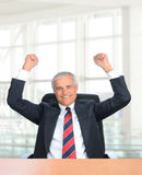 Businessman with Fists in the Air Stock Photos