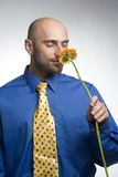 Businessman with flower Royalty Free Stock Photography