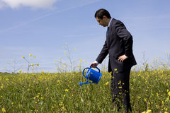 Businessman with a flowerpot. Businessman at the field with a flowerpot in his hand stock image