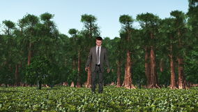 Businessman in Forest with Ivy Growing, Caught in Time, stock footage stock video