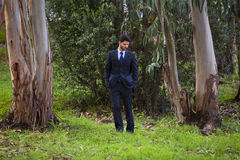 Businessman in the forest. Businessman lost at the forest stock photo