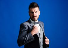 Businessman formal outfit. Classic style aesthetic. Perfect suit fit him. Menswear shop. Man adjust suit with bow tie. Well groomed man with beard in formal royalty free stock photos