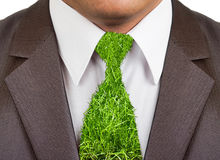 Businessman formal suit with grass tie. Close-up view of businessman formal wear suit with grass tie Stock Photography