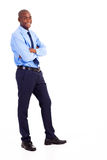 Businessman full body Royalty Free Stock Photography