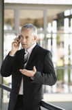Businessman Gesturing While Using Cell Phone. Middle aged businessman gesturing while using cell phone in office Royalty Free Stock Photos