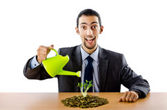 Businessman with gold seedlings and coins Royalty Free Stock Images