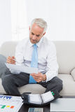 Businessman with graphs and diary at home. Concentrated mature businessman with graphs and diary sitting in the living room at home Stock Photos