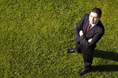 Businessman in the grass Royalty Free Stock Photos