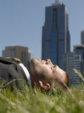 Businessman On Grass Against Office Buildings Stock Photos