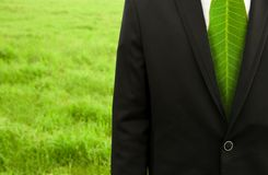 Businessman with green leaf tie Royalty Free Stock Photography