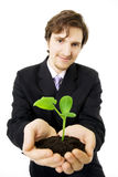 Businessman and green sprout Stock Images