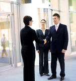 Businessman greeting partner Stock Photos