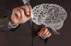 Businessman hand drawing a brain. On white board Stock Images