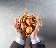 Businessman hands displaying organic eggs for concept of humanity preservation Royalty Free Stock Photo