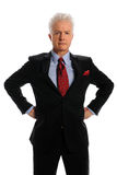 Businessman With Hands on Hips Stock Photography