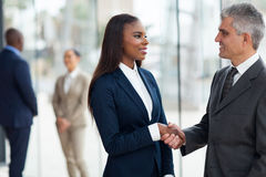 Businessman handshaking businesswoman Stock Image