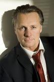 businessman handsome Στοκ εικόνα με δικαίωμα ελεύθερης χρήσης