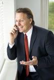businessman happy Στοκ εικόνα με δικαίωμα ελεύθερης χρήσης