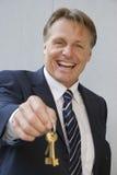 businessman happy Στοκ εικόνες με δικαίωμα ελεύθερης χρήσης