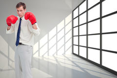 Businessman with his boxing gloves ready to fight Stock Image